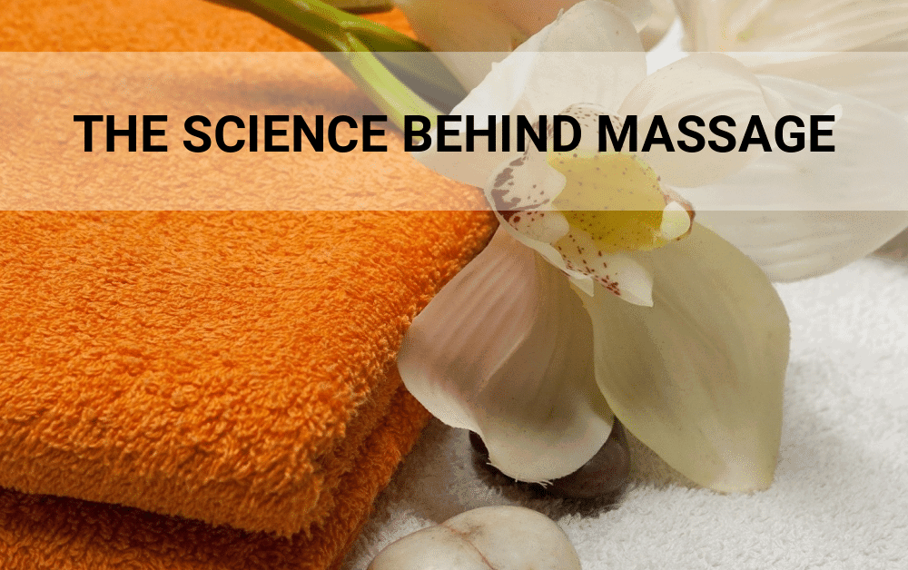 The Science Behind Massage – Why it Works